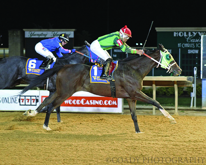 FOLLOW THE NOTION - West Virginia Thoroughbred Breeders Association Onion Juice Breeders Classic - 10-13-18 - R06 - CT - Finish  .jpg